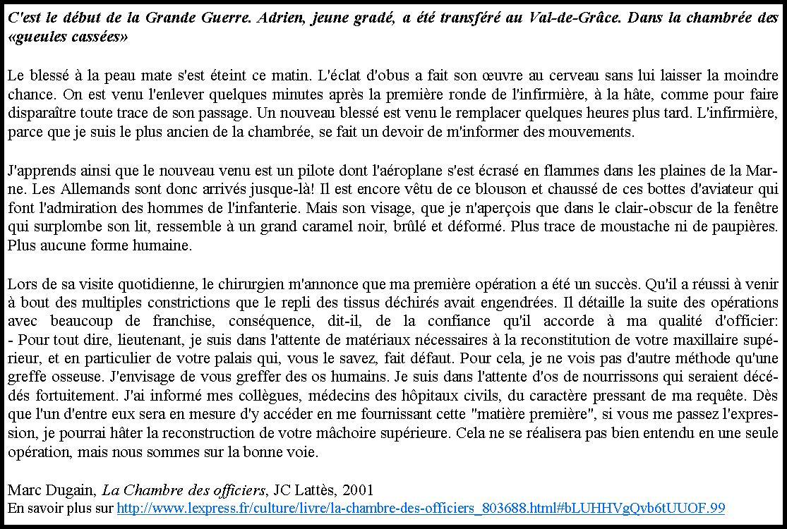 Francais sti stmg du lycee queneau a yvetot lecture for Marc dugain la chambre des officiers